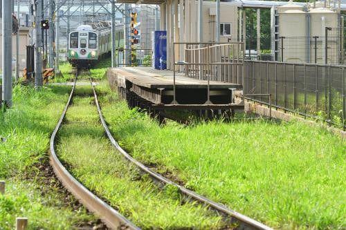 駅周辺の緑