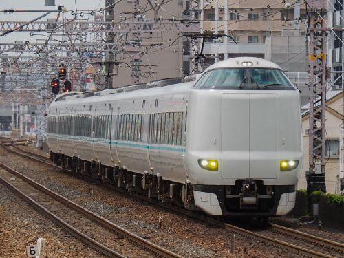 阪神電車野田駅前のノダフジ