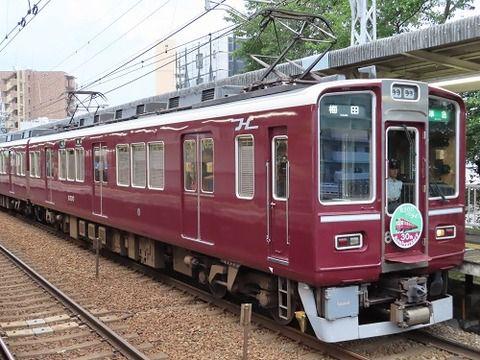 8000系列の30周年記念列車第2弾