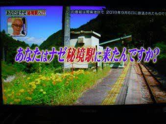 晴耕雨読日記 2019年(令和元年)10月16日 水曜日 やっと放送「秘境駅」