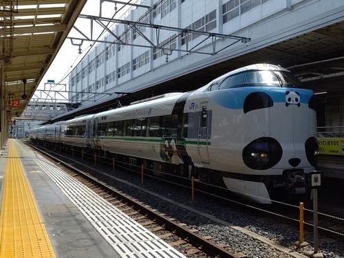 「パンダくろしお『サステナブルSmileトレイン』」を和歌山駅でみる(2020.8.1)