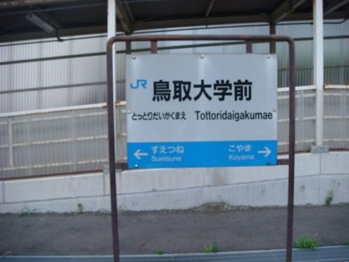 涼しげな駅舎があります 山陰本線・鳥取大学前