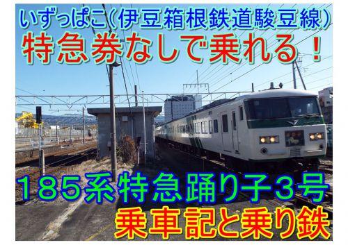 【伊豆箱根鉄道駿豆線で185系特急踊り3号に特急券なしで乗る】特急踊り子を追いかけた⑧